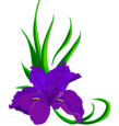 Логотип салона красоты Ирис